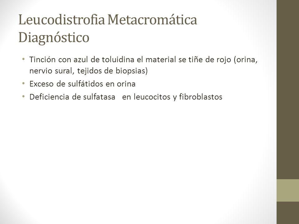 Leucodistrofia Metacromática Diagnóstico Tinción con azul de toluidina el material se tiñe de rojo (orina, nervio sural, tejidos de biopsias) Exceso d