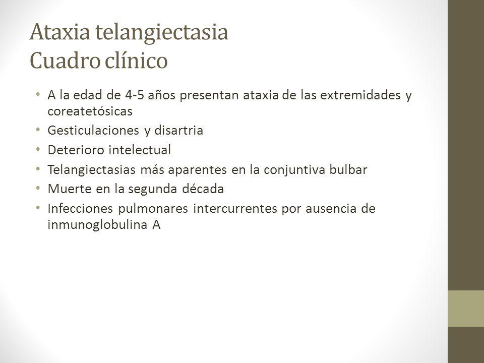 Ataxia telangiectasia Cuadro clínico A la edad de 4-5 años presentan ataxia de las extremidades y coreatetósicas Gesticulaciones y disartria Deterioro