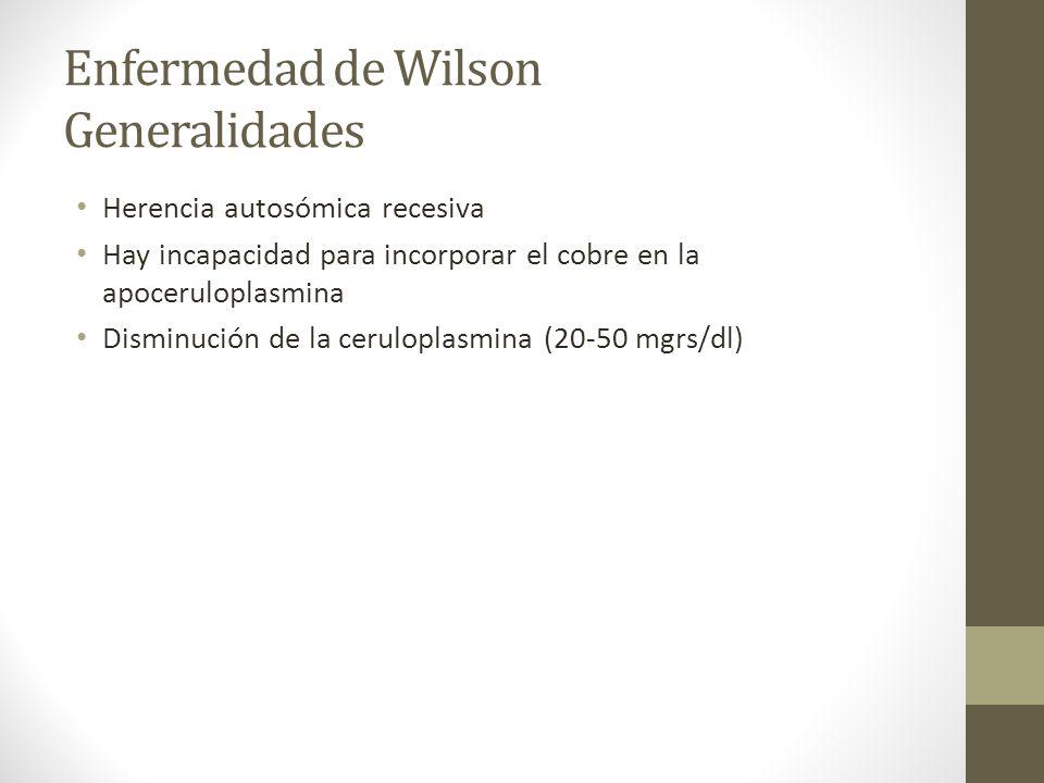 Enfermedad de Wilson Generalidades Herencia autosómica recesiva Hay incapacidad para incorporar el cobre en la apoceruloplasmina Disminución de la cer