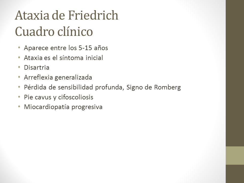 Ataxia de Friedrich Cuadro clínico Aparece entre los 5-15 años Ataxia es el síntoma inicial Disartria Arreflexia generalizada Pérdida de sensibilidad