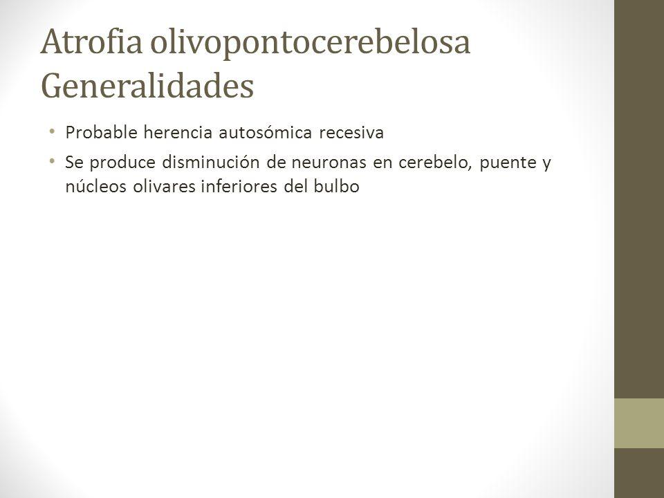 Atrofia olivopontocerebelosa Generalidades Probable herencia autosómica recesiva Se produce disminución de neuronas en cerebelo, puente y núcleos oliv
