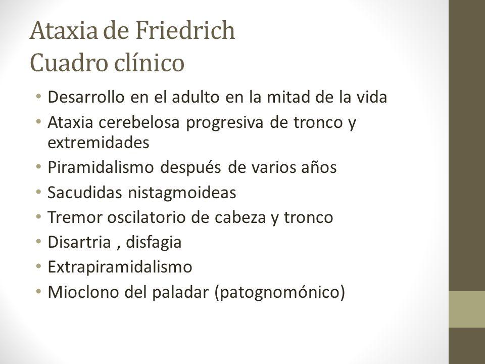 Ataxia de Friedrich Cuadro clínico Desarrollo en el adulto en la mitad de la vida Ataxia cerebelosa progresiva de tronco y extremidades Piramidalismo