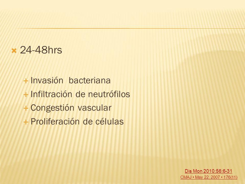 24-48hrs Invasión bacteriana Infiltración de neutrófilos Congestión vascular Proliferación de células CMAJ May 22, 2007 176(11) Dis Mon 2010;56:6-31