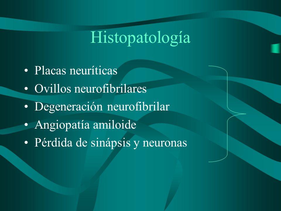 Histopatología Placas neuríticas Ovillos neurofibrilares Degeneración neurofibrilar Angiopatía amiloide Pérdida de sinápsis y neuronas