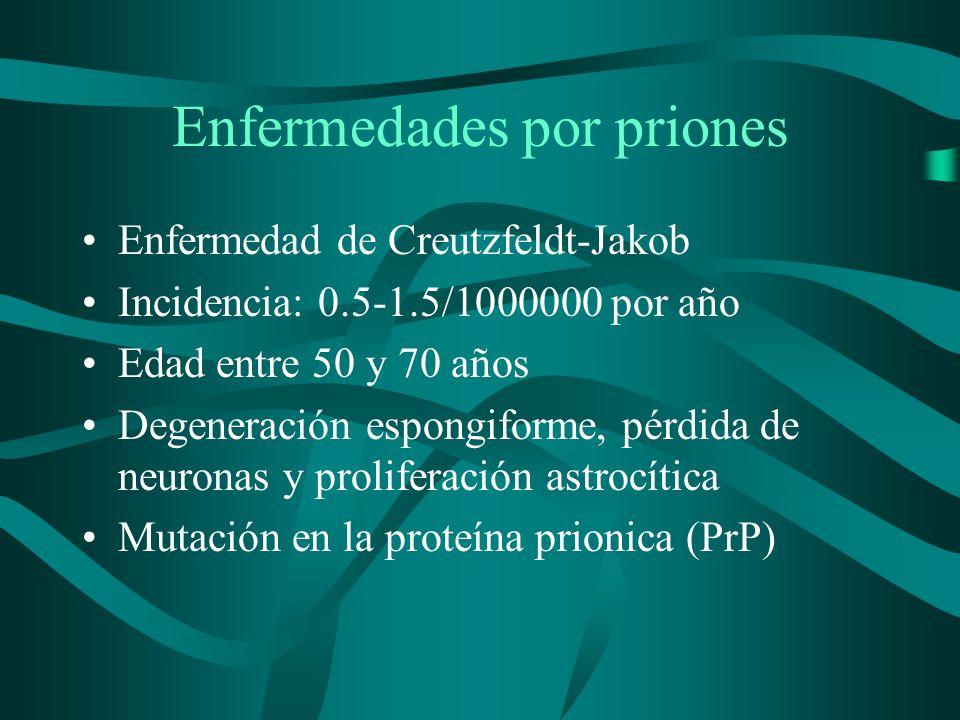 Enfermedades por priones Enfermedad de Creutzfeldt-Jakob Incidencia: 0.5-1.5/1000000 por año Edad entre 50 y 70 años Degeneración espongiforme, pérdid