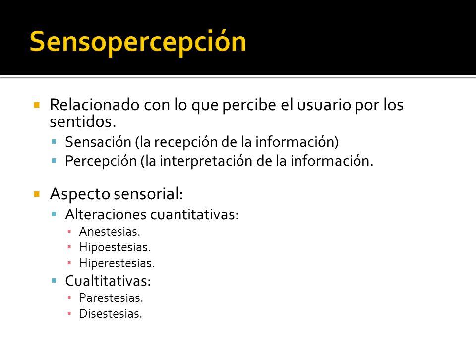 Relacionado con lo que percibe el usuario por los sentidos. Sensación (la recepción de la información) Percepción (la interpretación de la información