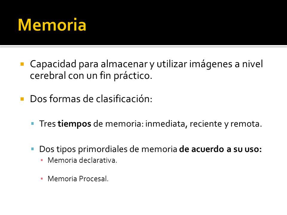 Capacidad para almacenar y utilizar imágenes a nivel cerebral con un fin práctico. Dos formas de clasificación: Tres tiempos de memoria: inmediata, re