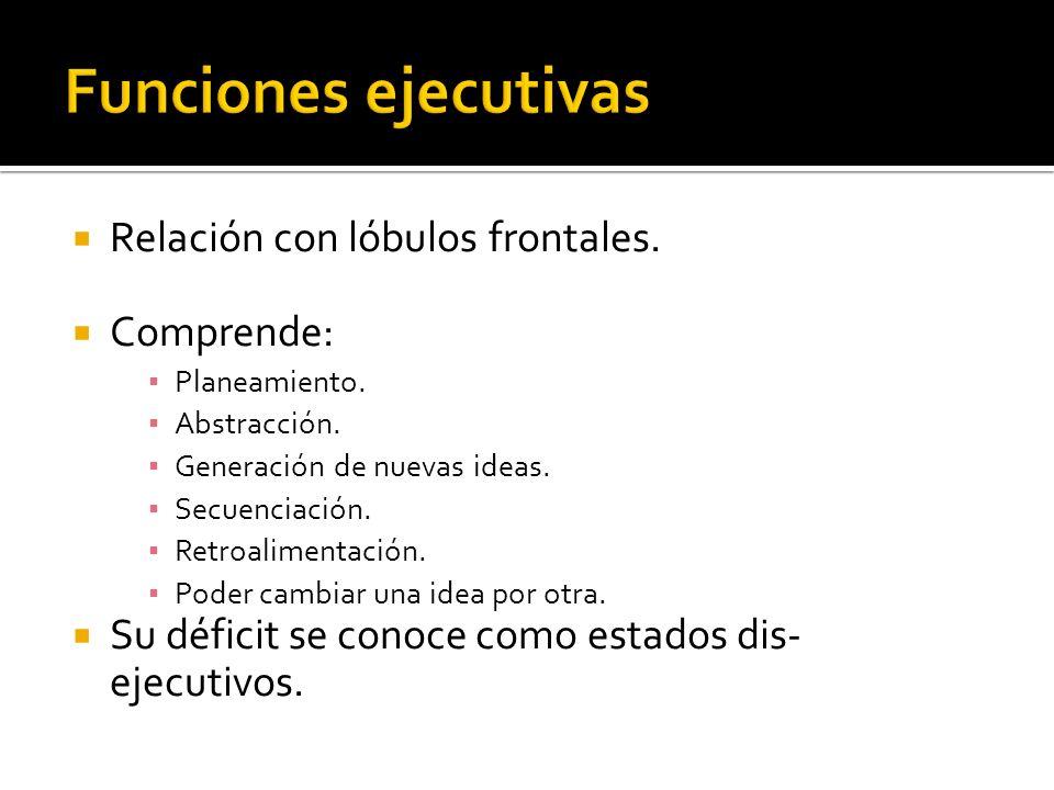 Relación con lóbulos frontales. Comprende: Planeamiento. Abstracción. Generación de nuevas ideas. Secuenciación. Retroalimentación. Poder cambiar una