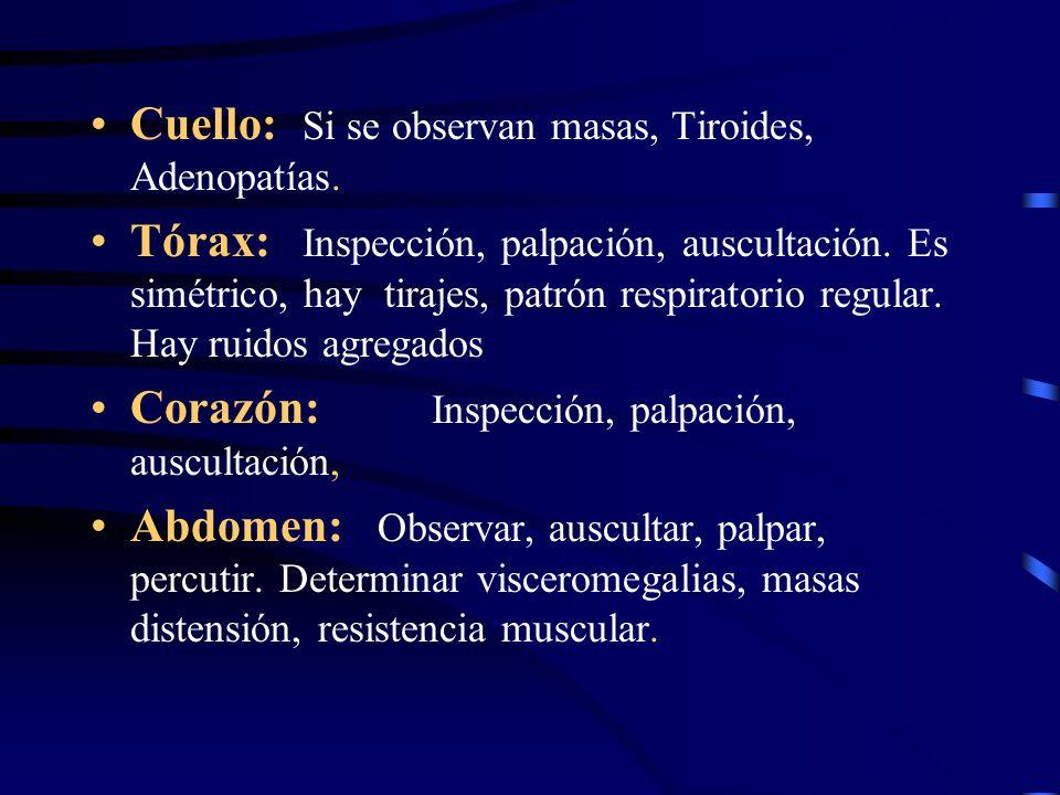 Cuello: Si se observan masas, Tiroides, Adenopatías. Tórax: Inspección, palpación, auscultación. Es simétrico, hay tirajes, patrón respiratorio regula