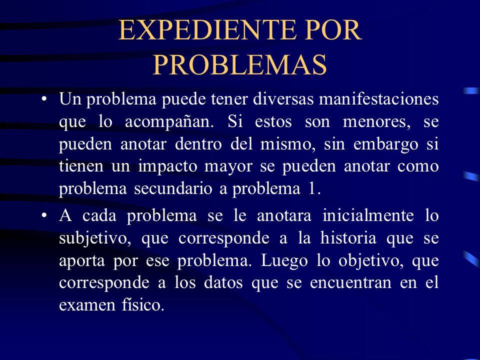 EXPEDIENTE POR PROBLEMAS Un problema puede tener diversas manifestaciones que lo acompañan. Si estos son menores, se pueden anotar dentro del mismo, s
