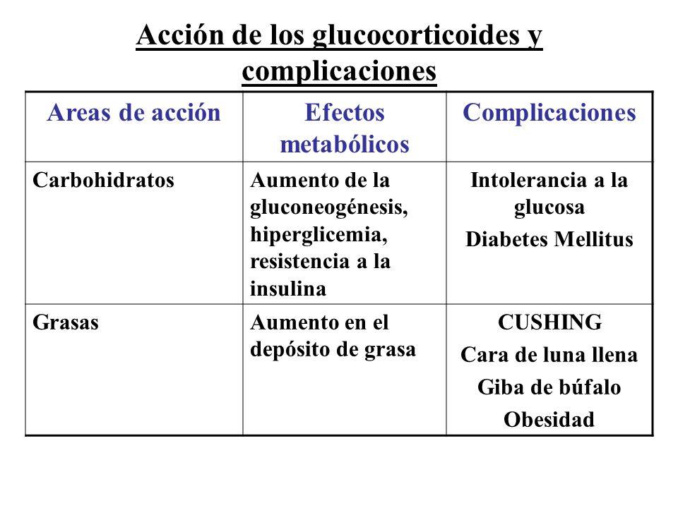 Acción de los glucocorticoides y complicaciones Areas de acciónEfectos metabólicos Complicaciones CarbohidratosAumento de la gluconeogénesis, hipergli