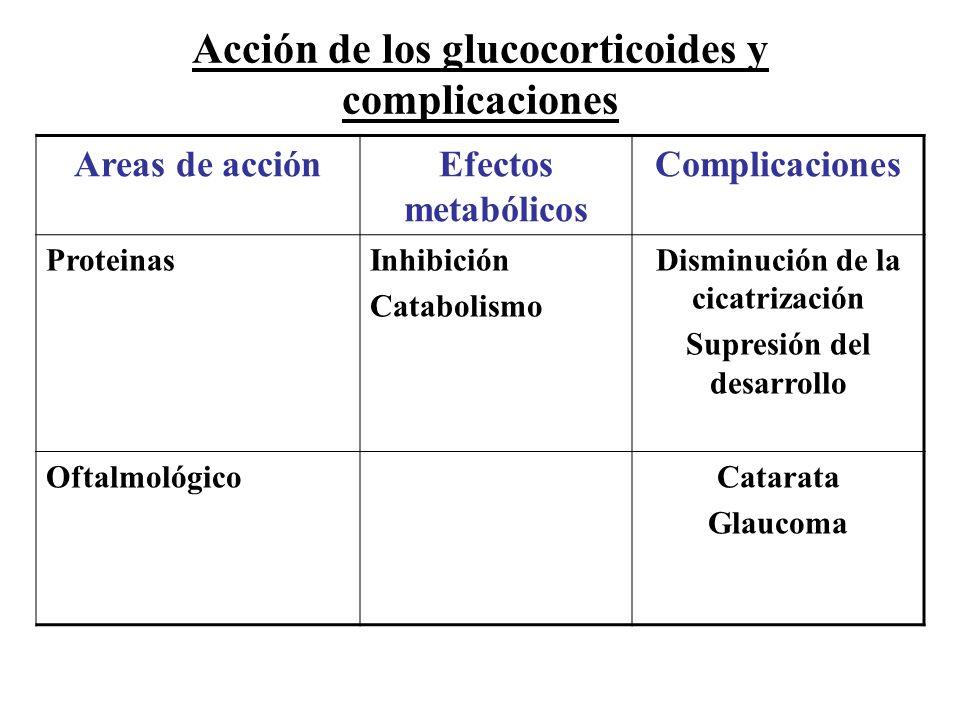 Acción de los glucocorticoides y complicaciones Areas de acciónEfectos metabólicos Complicaciones ProteinasInhibición Catabolismo Disminución de la ci