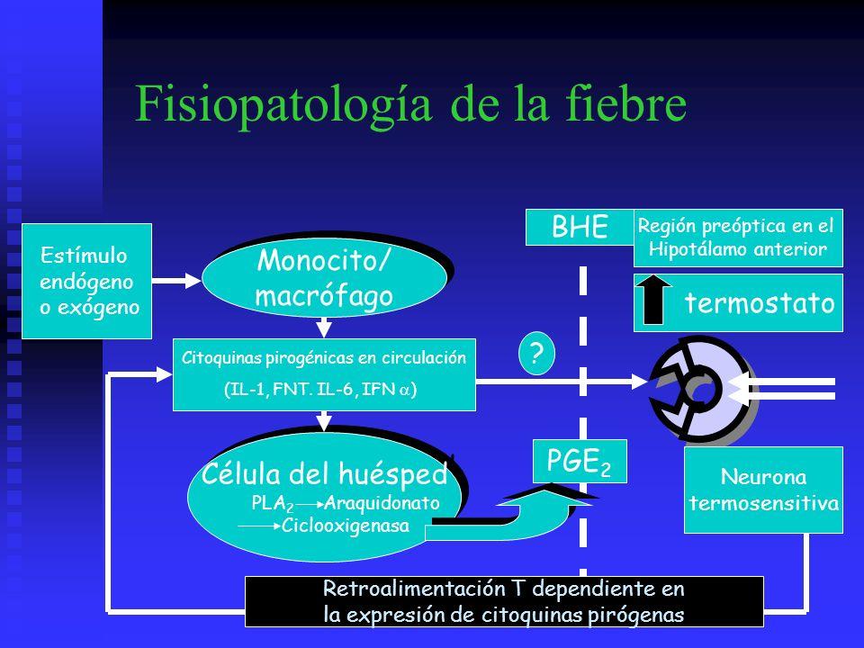 Fisiopatología de la fiebre Monocito/ macrófago Monocito/ macrófago Estímulo endógeno o exógeno Célula del huésped PLA 2 Araquidonato Ciclooxigenasa C