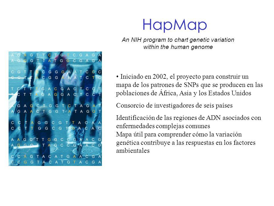 HapMap An NIH program to chart genetic variation within the human genome Iniciado en 2002, el proyecto para construir un mapa de los patrones de SNPs