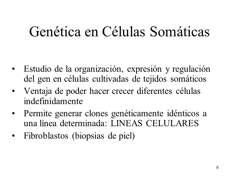 6 Genética en Células Somáticas Estudio de la organización, expresión y regulación del gen en células cultivadas de tejidos somáticos Ventaja de poder
