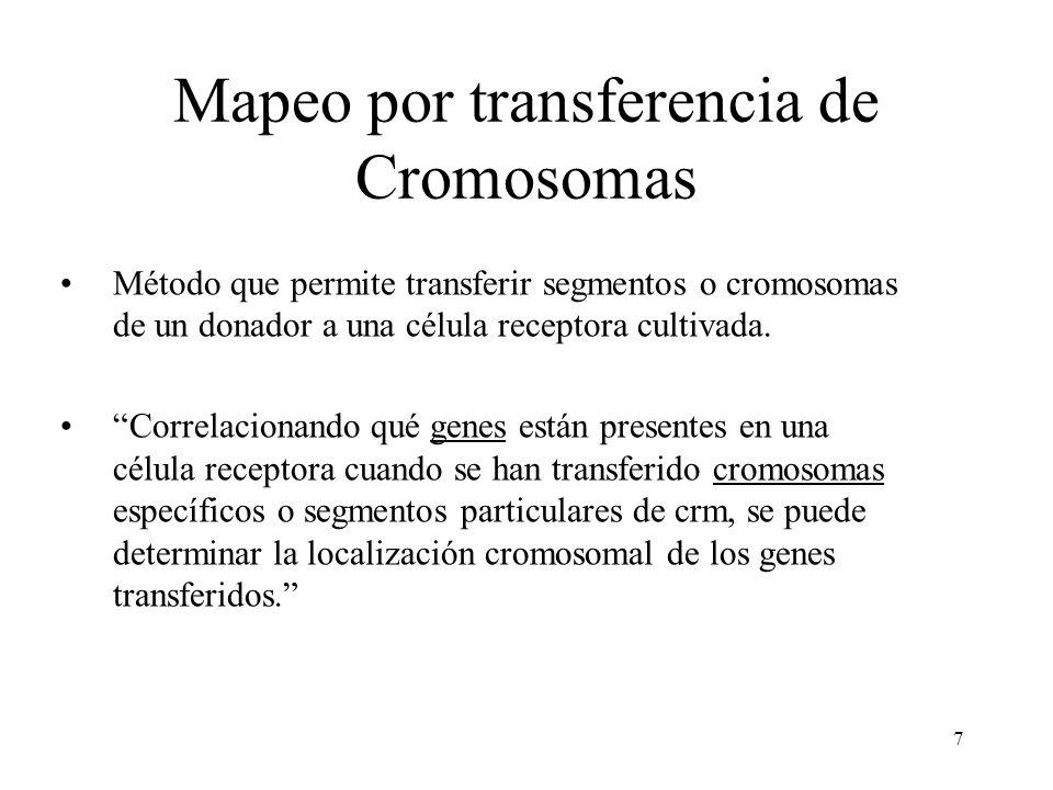7 Mapeo por transferencia de Cromosomas Método que permite transferir segmentos o cromosomas de un donador a una célula receptora cultivada. Correlaci