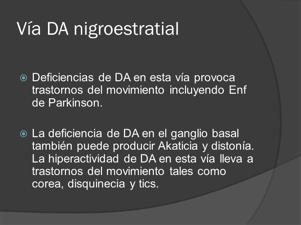 Vía DA nigroestratial Deficiencias de DA en esta vía provoca trastornos del movimiento incluyendo Enf de Parkinson.