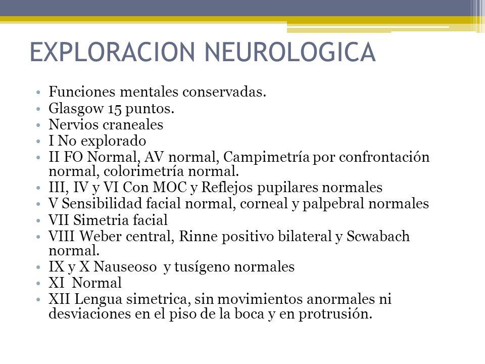 EXPLORACION NEUROLOGICA Funciones mentales conservadas. Glasgow 15 puntos. Nervios craneales I No explorado II FO Normal, AV normal, Campimetría por c