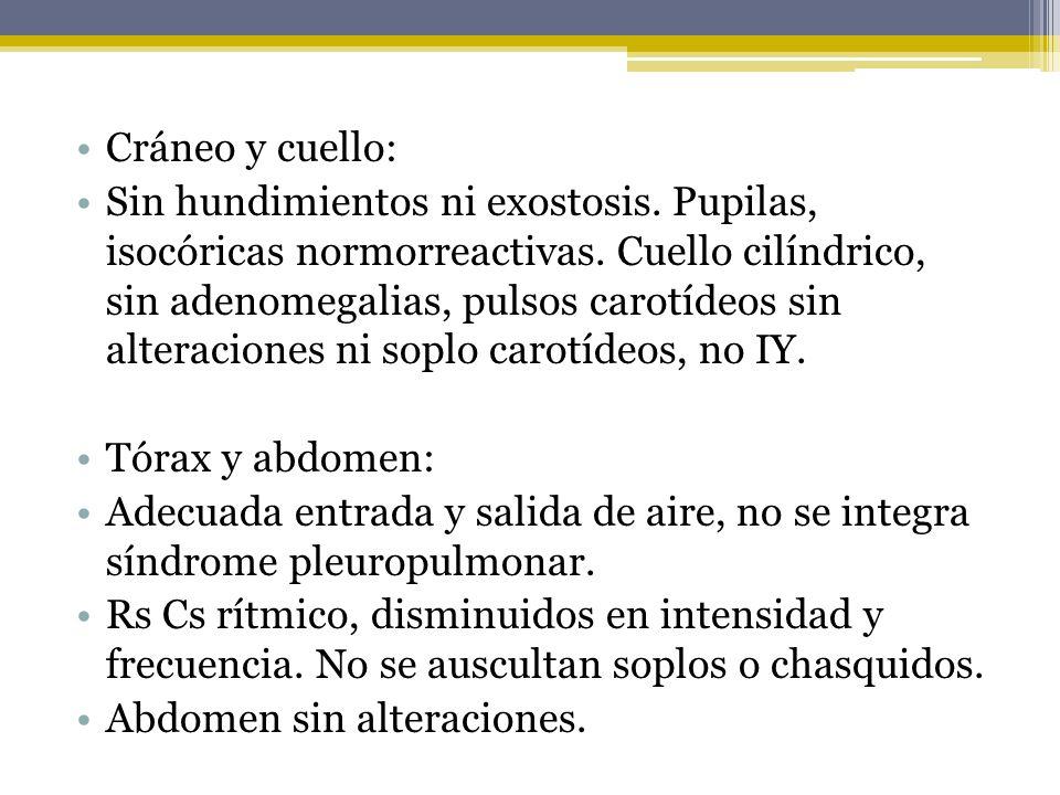 Cráneo y cuello: Sin hundimientos ni exostosis. Pupilas, isocóricas normorreactivas. Cuello cilíndrico, sin adenomegalias, pulsos carotídeos sin alter
