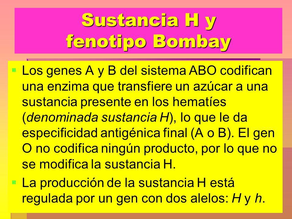 Sustancia H y fenotipo Bombay Los genes A y B del sistema ABO codifican una enzima que transfiere un azúcar a una sustancia presente en los hematíes (