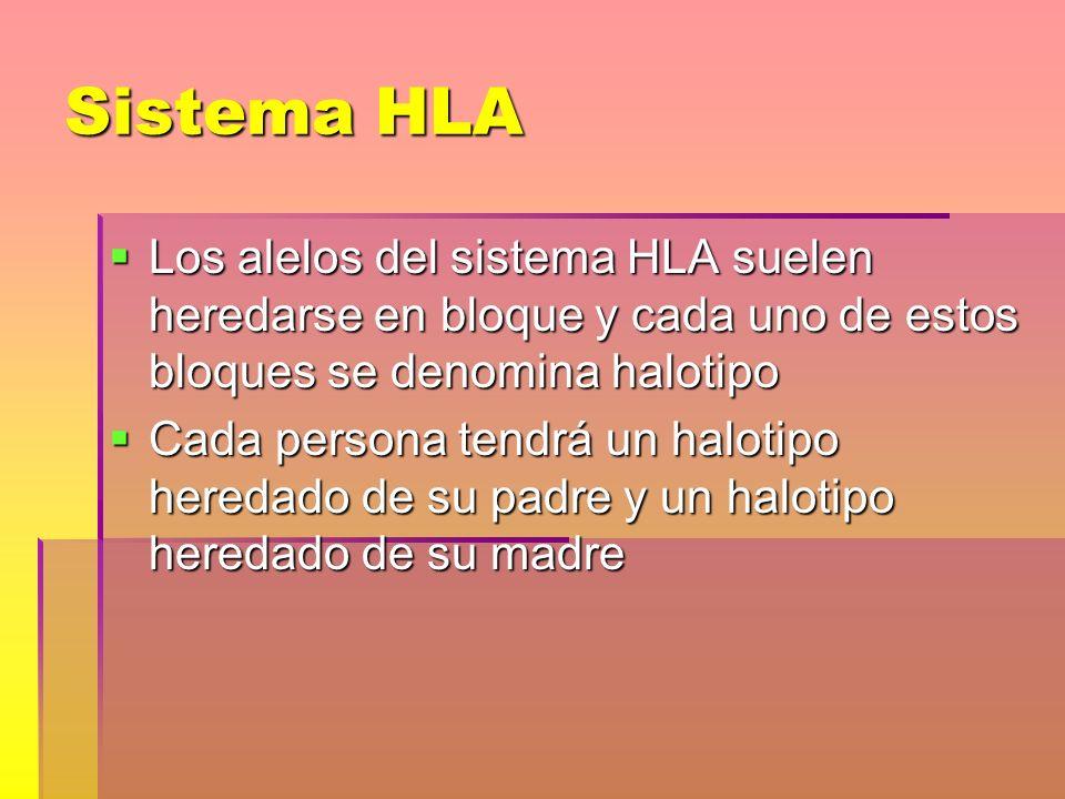Sistema HLA Los alelos del sistema HLA suelen heredarse en bloque y cada uno de estos bloques se denomina halotipo Los alelos del sistema HLA suelen h