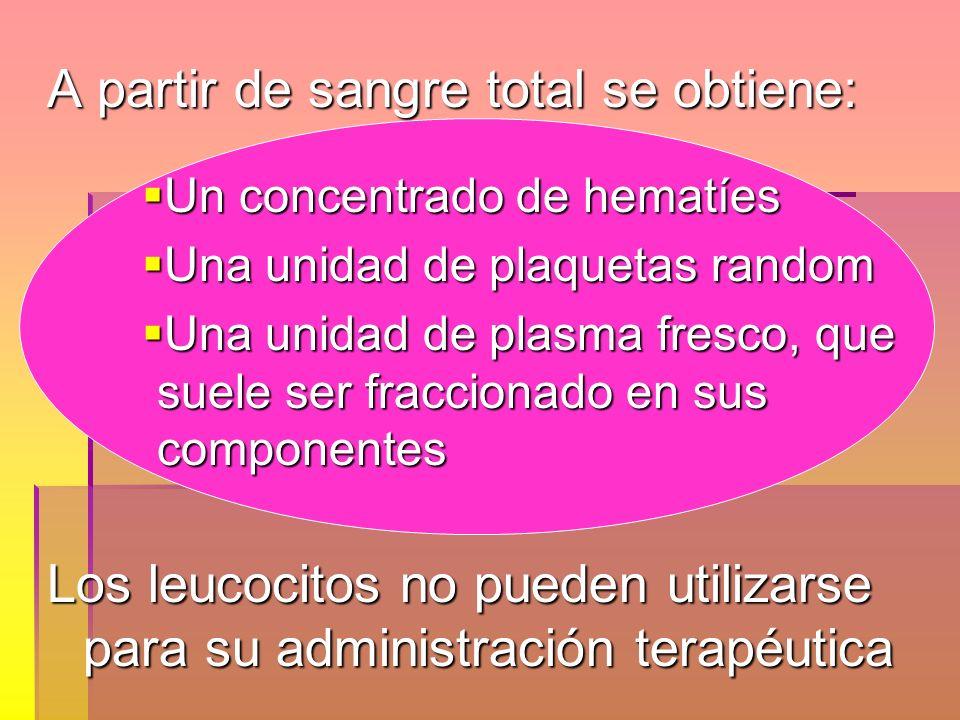 A partir de sangre total se obtiene: Un concentrado de hematíes Un concentrado de hematíes Una unidad de plaquetas random Una unidad de plaquetas rand