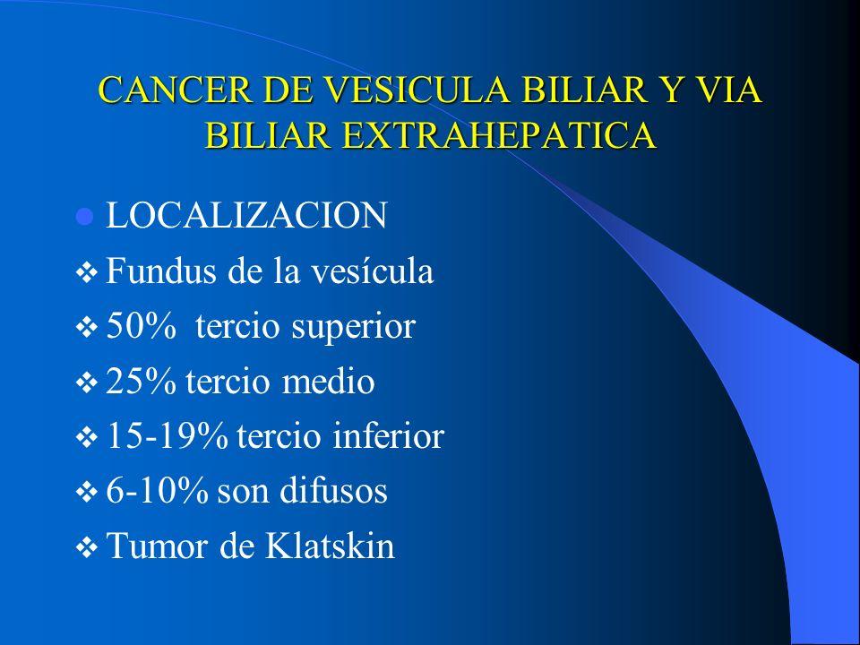 CANCER DE VESICULA BILIAR Y VIA BILIAR EXTRAHEPATICA LOCALIZACION Fundus de la vesícula 50% tercio superior 25% tercio medio 15-19% tercio inferior 6-