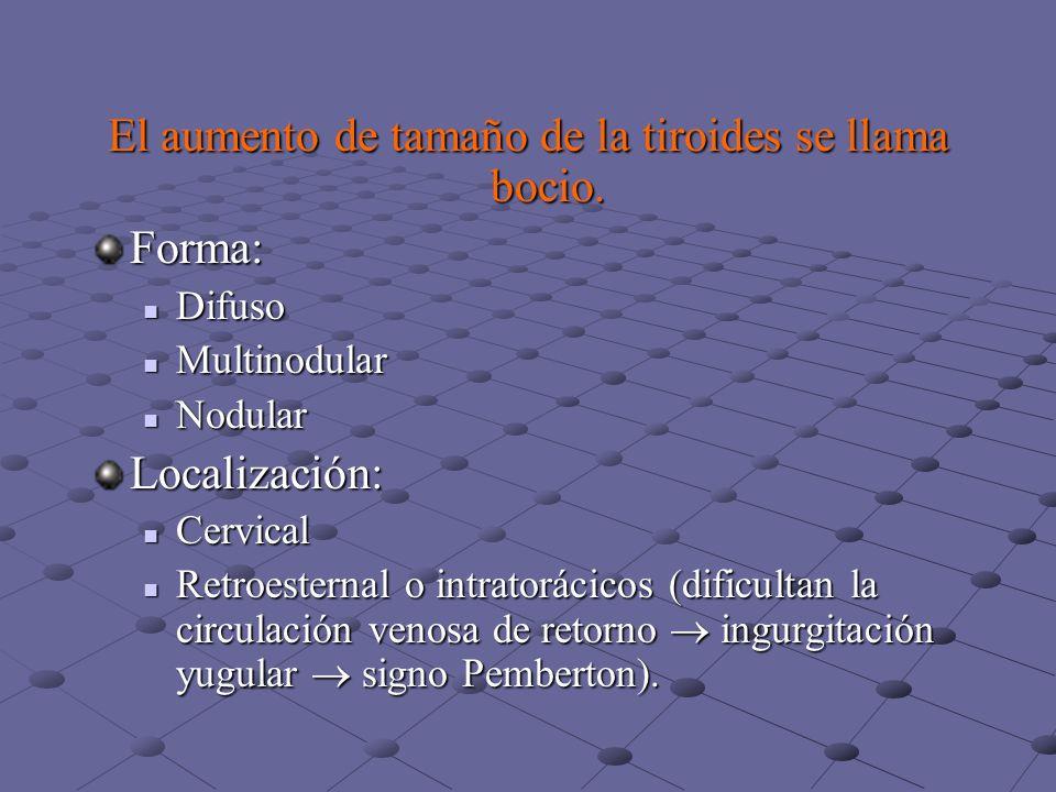 Efectos fisiológicos de las hormonas tiroideas Desarrollo fetal (desarrollo cerebral, maduración del esqueleto).