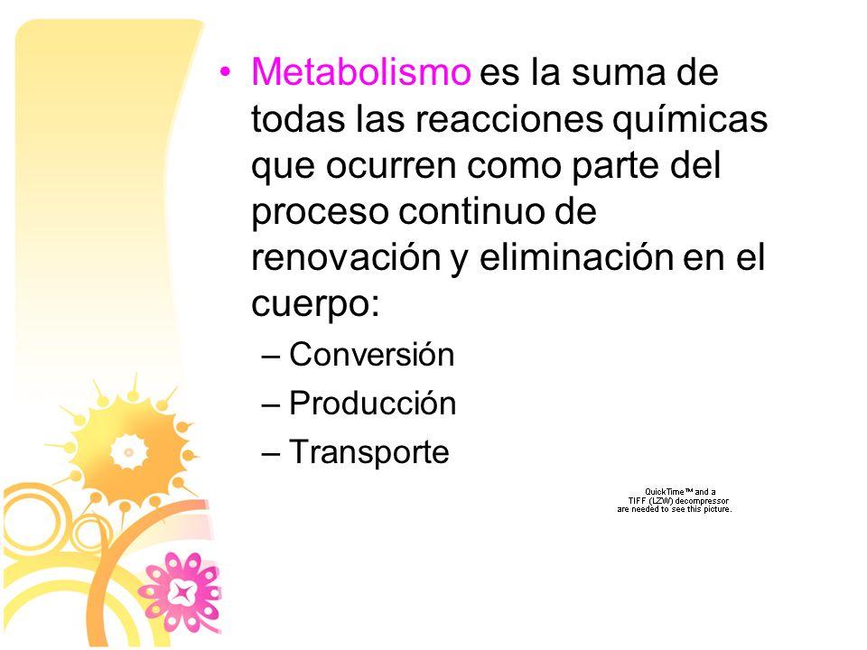 Se conocen más de 500 errores congénitos del metabolismo hoy en día.