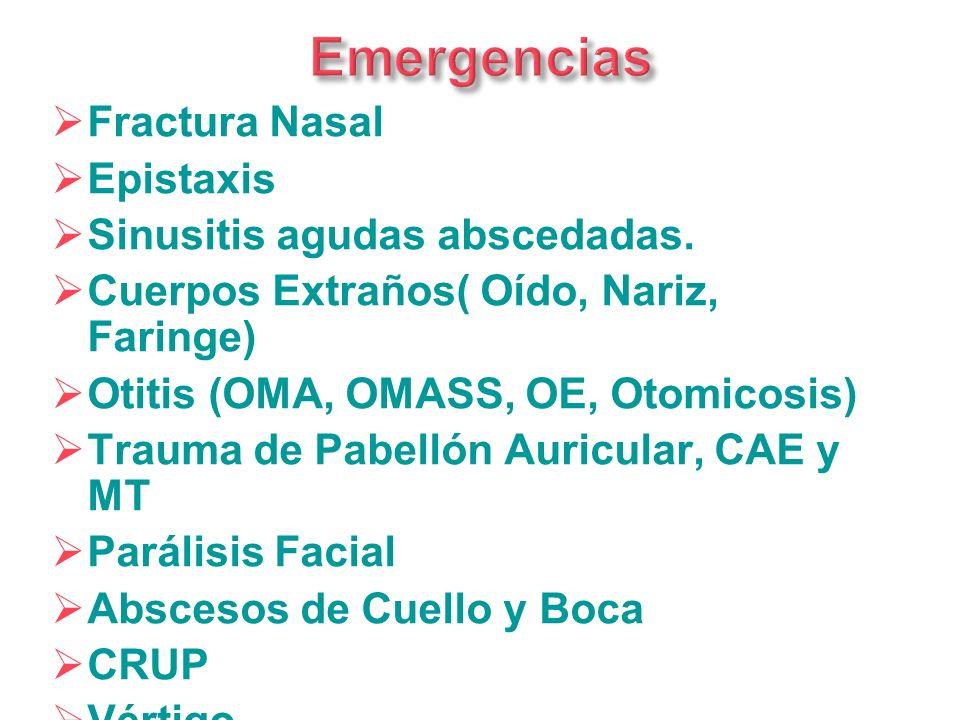 Fractura Nasal Epistaxis Sinusitis agudas abscedadas. Cuerpos Extraños( Oído, Nariz, Faringe) Otitis (OMA, OMASS, OE, Otomicosis) Trauma de Pabellón A