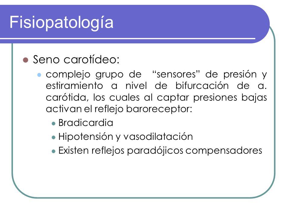 Fisiopatología Seno carotídeo: complejo grupo de sensores de presión y estiramiento a nivel de bifurcación de a. carótida, los cuales al captar presio