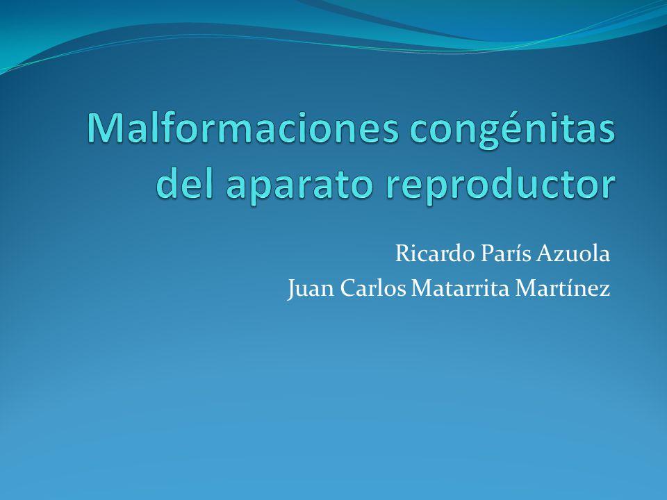Ricardo París Azuola Juan Carlos Matarrita Martínez