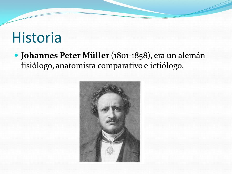 Historia Johannes Peter Müller (1801-1858), era un alemán fisiólogo, anatomista comparativo e ictiólogo.