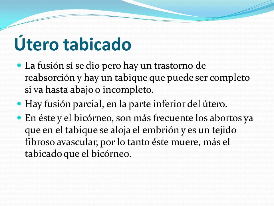 Útero tabicado La fusión sí se dio pero hay un trastorno de reabsorción y hay un tabique que puede ser completo si va hasta abajo o incompleto. Hay fu