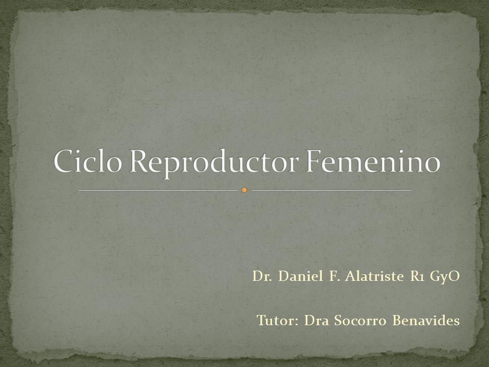 Dr. Daniel F. Alatriste R1 GyO Tutor: Dra Socorro Benavides