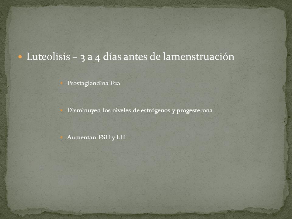 Luteolisis – 3 a 4 días antes de lamenstruación Prostaglandina F2a Disminuyen los niveles de estrógenos y progesterona Aumentan FSH y LH