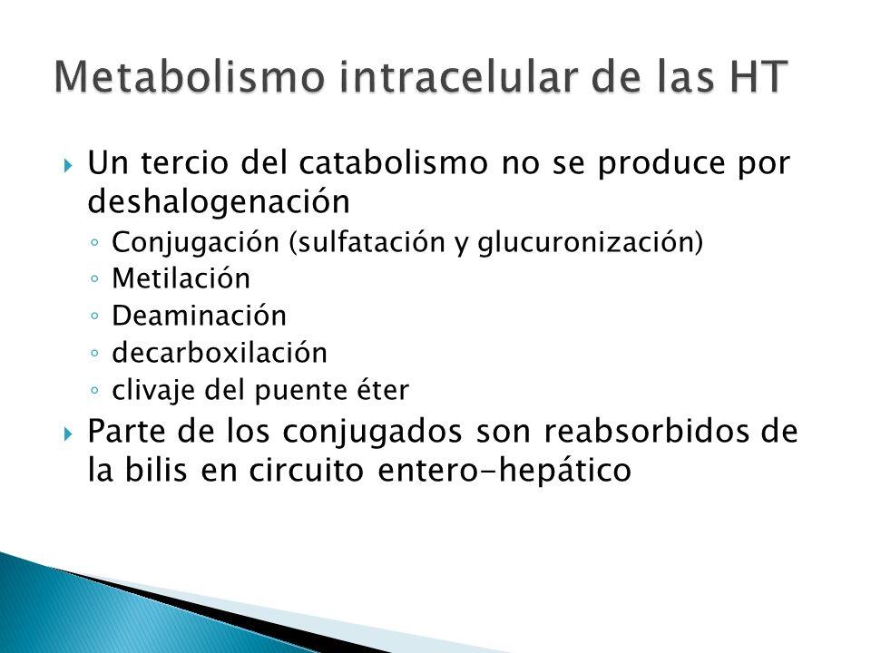 Un tercio del catabolismo no se produce por deshalogenación Conjugación (sulfatación y glucuronización) Metilación Deaminación decarboxilación clivaje