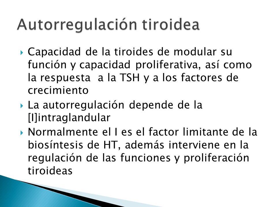 Capacidad de la tiroides de modular su función y capacidad proliferativa, así como la respuesta a la TSH y a los factores de crecimiento La autorregul