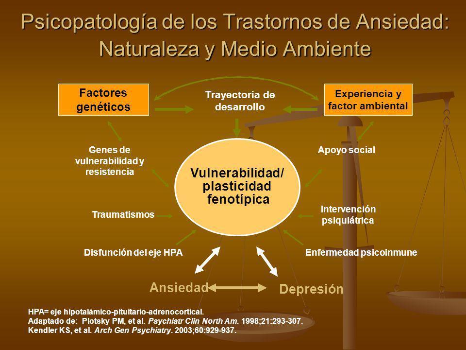 HPA= eje hipotalámico-pituitario-adrenocortical. Adaptado de: Plotsky PM, et al. Psychiatr Clin North Am. 1998;21:293-307. Kendler KS, et al. Arch Gen