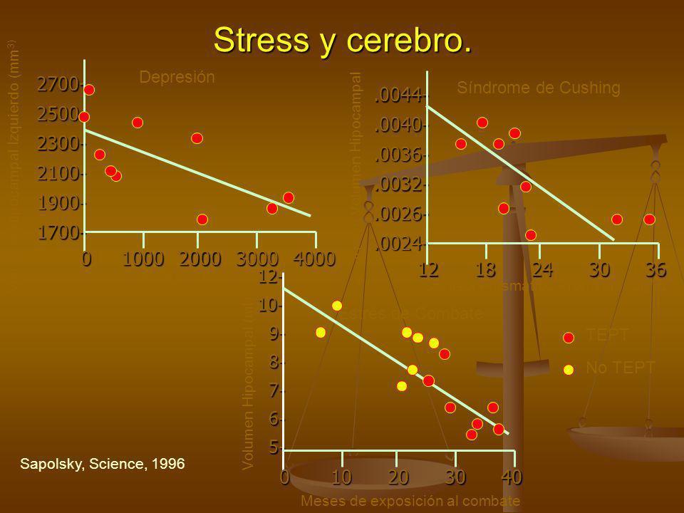 Stress y cerebro. 2700- 2500- 2300- 2100- 1900- 1700- 01000200030004000.0044-.0040-.0036-.0032-.0026-.0024- 1218243036 12-10- 9- 9- 8- 8- 7- 7- 6- 6-