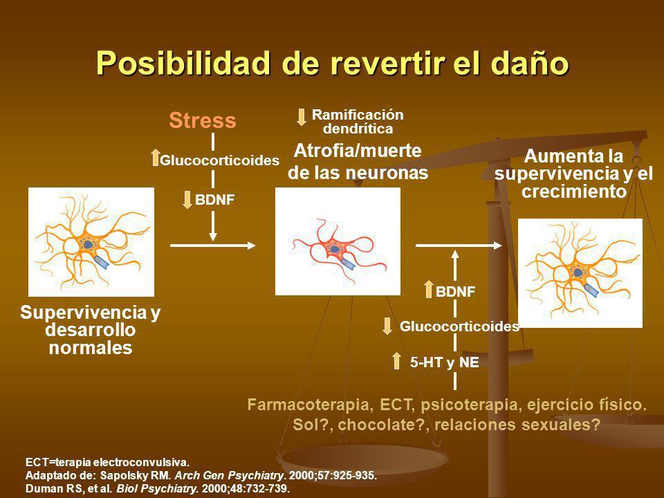 Posibilidad de revertir el daño ECT=terapia electroconvulsiva. Adaptado de: Sapolsky RM. Arch Gen Psychiatry. 2000;57:925-935. Duman RS, et al. Biol P