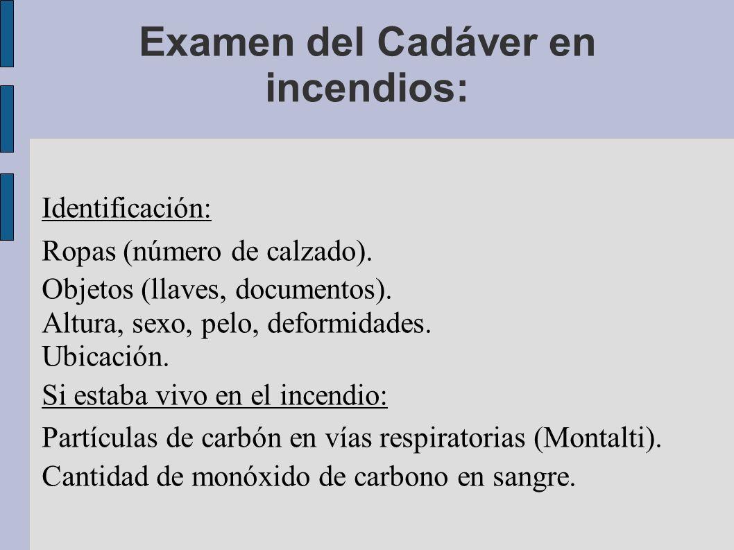 Examen del Cadáver en incendios: Identificación: Ropas (número de calzado). Objetos (llaves, documentos). Altura, sexo, pelo, deformidades. Ubicación.
