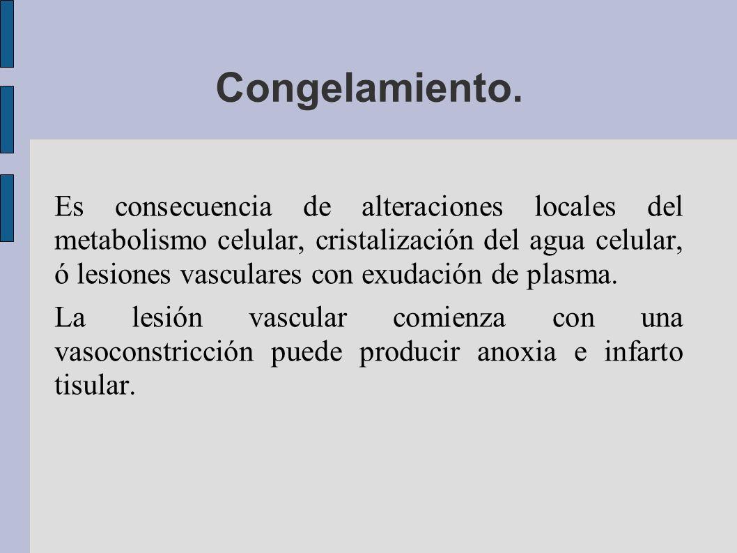 Congelamiento. Es consecuencia de alteraciones locales del metabolismo celular, cristalización del agua celular, ó lesiones vasculares con exudación d