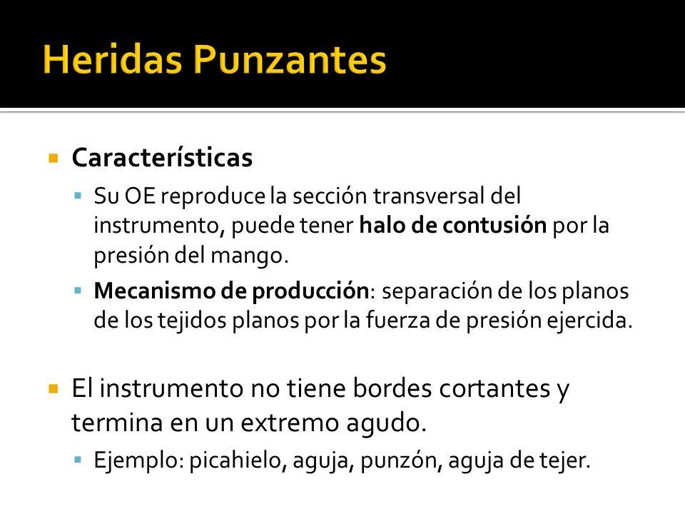 Características Su OE reproduce la sección transversal del instrumento, puede tener halo de contusión por la presión del mango. Mecanismo de producció