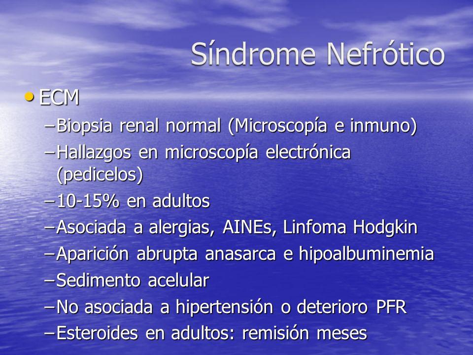 ECM ECM –Biopsia renal normal (Microscopía e inmuno) –Hallazgos en microscopía electrónica (pedicelos) –10-15% en adultos –Asociada a alergias, AINEs,