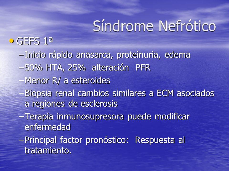 GEFS 1ª GEFS 1ª –Inicio rápido anasarca, proteinuria, edema –50% HTA, 25% alteración PFR –Menor R/ a esteroides –Biopsia renal cambios similares a ECM