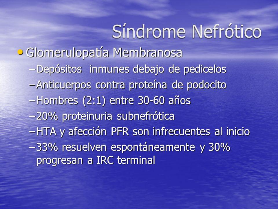 Glomerulopatía Membranosa Glomerulopatía Membranosa –Depósitos inmunes debajo de pedicelos –Anticuerpos contra proteína de podocito –Hombres (2:1) ent