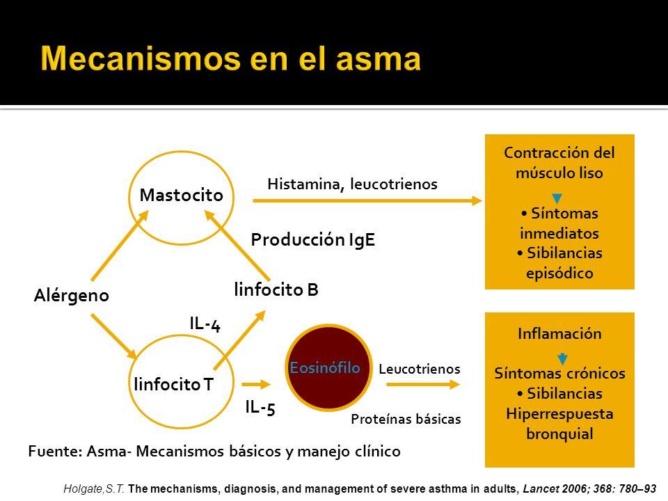 Contracción del músculo liso Síntomas inmediatos Sibilancias episódico Inflamación Síntomas crónicos Sibilancias Hiperrespuesta bronquial Mastocito Hi