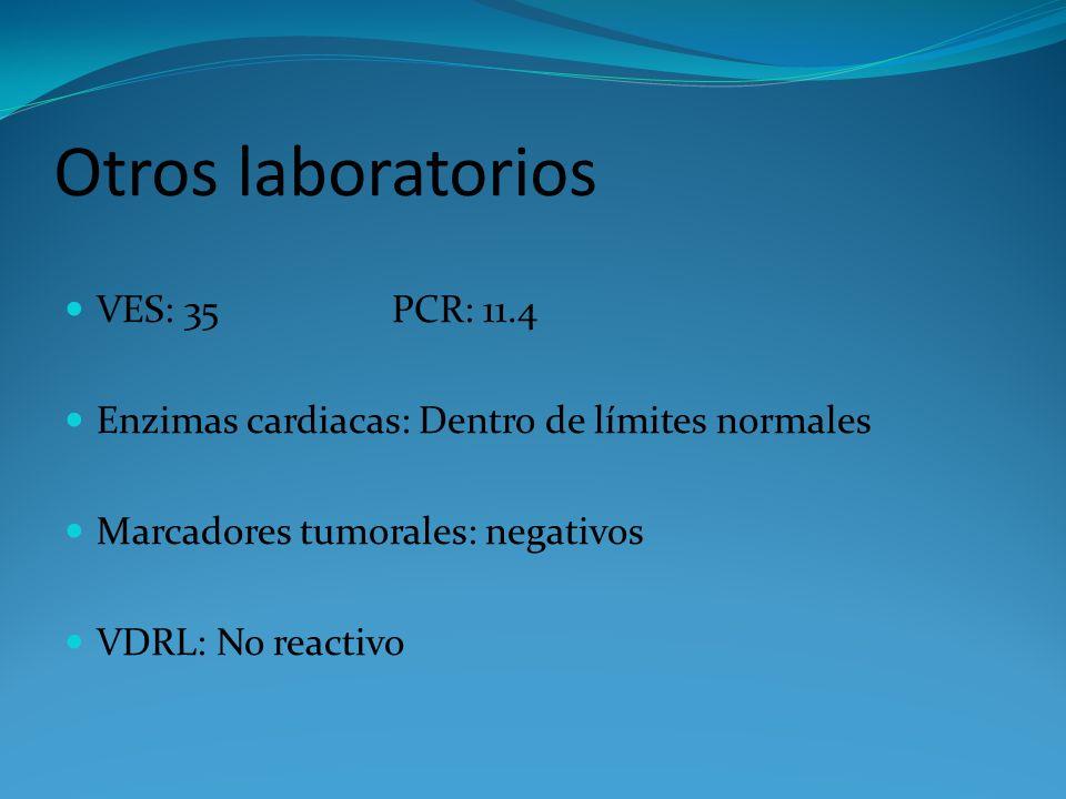 Otros laboratorios VES: 35 PCR: 11.4 Enzimas cardiacas: Dentro de límites normales Marcadores tumorales: negativos VDRL: No reactivo