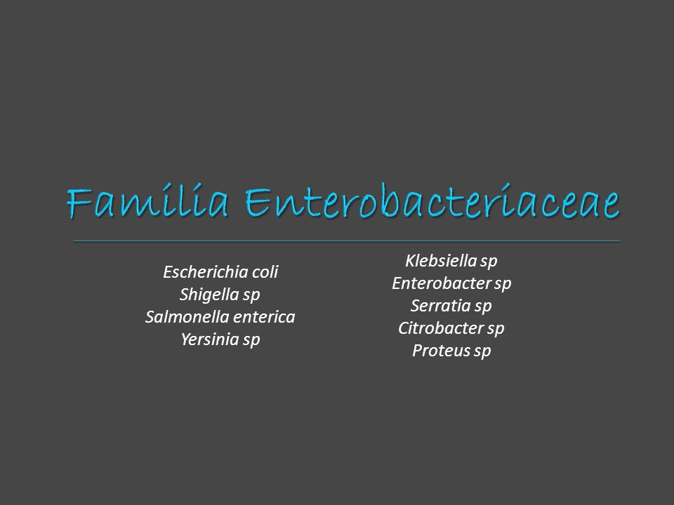 Escherichia coli Shigella sp Salmonella enterica Yersinia sp Klebsiella sp Enterobacter sp Serratia sp Citrobacter sp Proteus sp